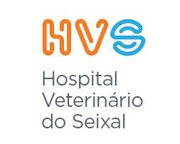 HVS_vertical