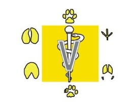 clinica-veterinaria-santo-onofre