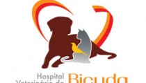 hospital-veterinario-da-bicuda