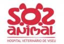 sos-animal-hospital-veterinario