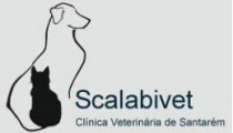 clinica-veterinaria-Scalabivet