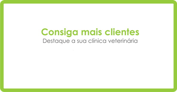 promover clínica veterinária